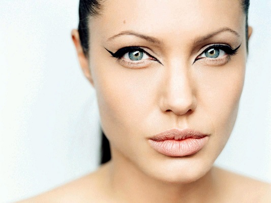 Angelina Jolie Contact Information