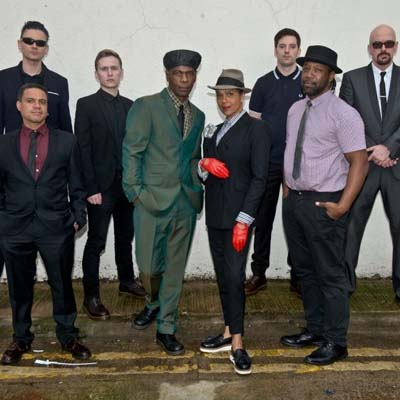 The Selecter Contact Information