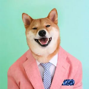 Menswear-Dog-Contact-Information