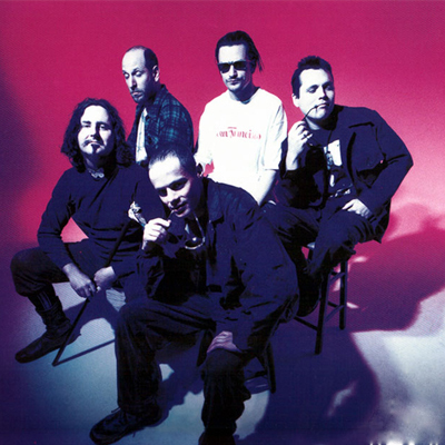 Mr.-Bungle-Contact-Information