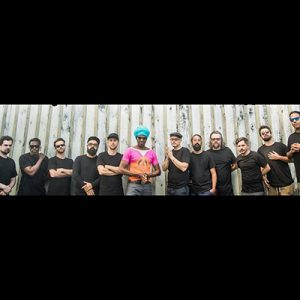 Antibalas -Contact-Information